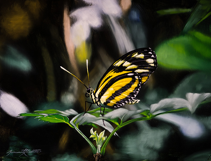 A painting of a yellow and black butterfly standing on a leaf at the Butterfly Pavilion.
